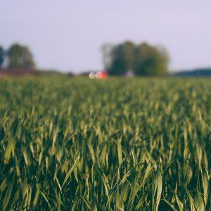 taxatie-agrarisch-onroerend-goed
